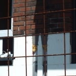 Tetovska,-work-in-progress,-Feldhaus-Klinker-R685-WDF-005